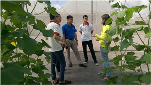 Thăm quan Nông trường nông nghiệp công nghệ cao VinEco Long Thành, tỉnh Đồng Nai